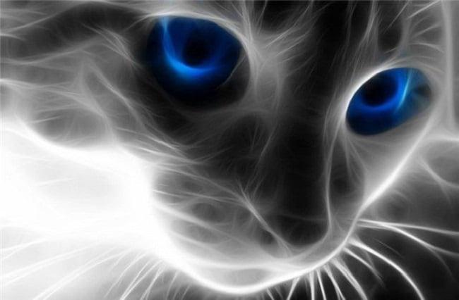 Inessa avatar